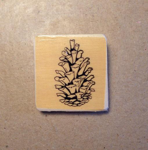 pinecone-3